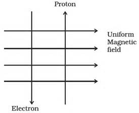 Physics Around Us How And Why Things Work